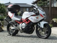 yoshi's TRX
